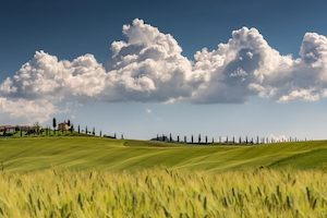 A landscape shot of val d'orcia tuscany italy with a cloudy sunny blue sky in the background