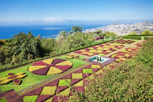 FUNCHAL, MADEIRA - JuLY 09: Botanical Gardens Madeira on July 09, 2014 in Madeira, Portugal.